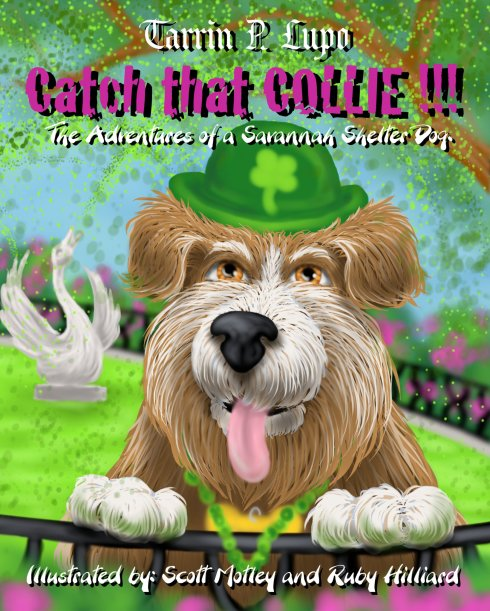 Catch That Collie